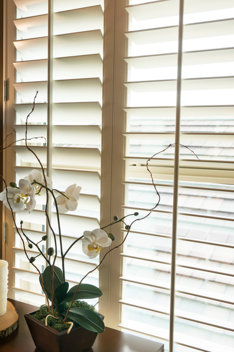 Get Answers to Your Most Commonly Asked Questions About Plantation Shutters